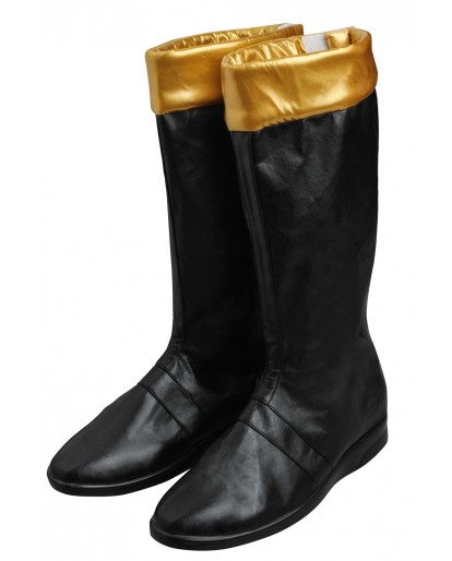 Power Rangers Dino Thunder Black Dino Ranger Cosplay Boots