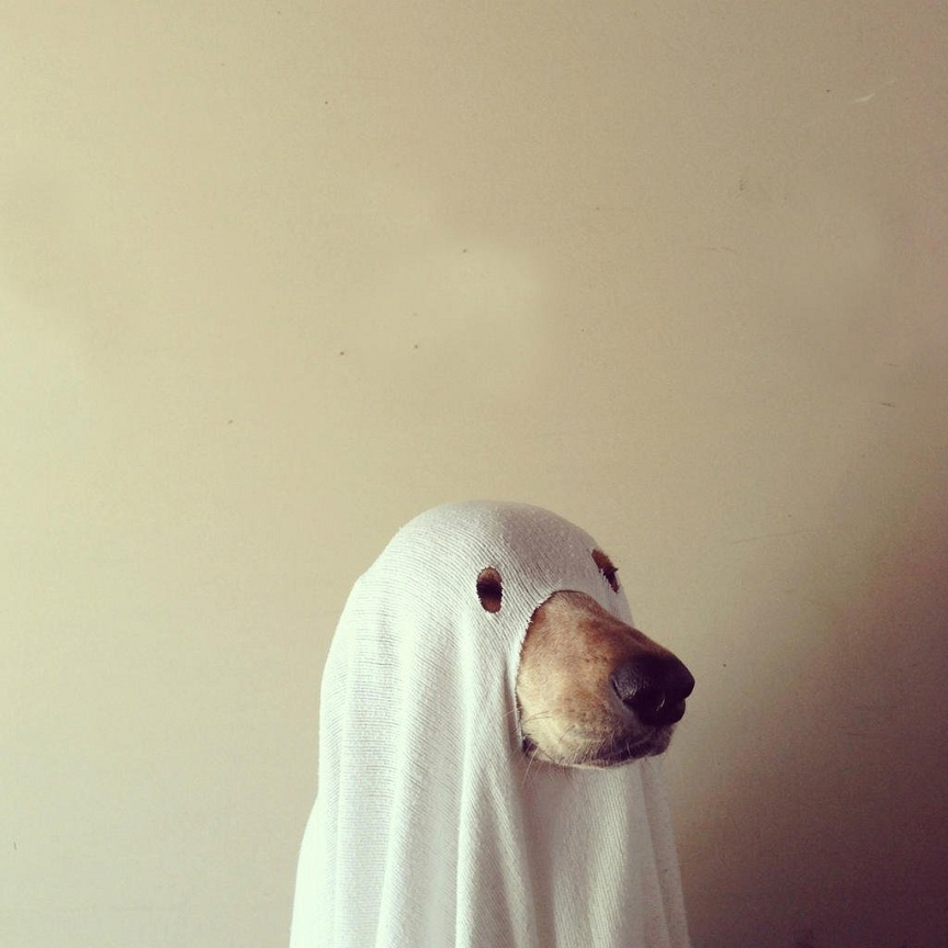 Ghost cosplay ideas