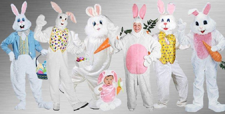 Lovely Bunny Costumes